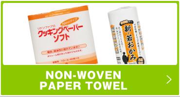 NON-WOVEN PAPER TOWEL